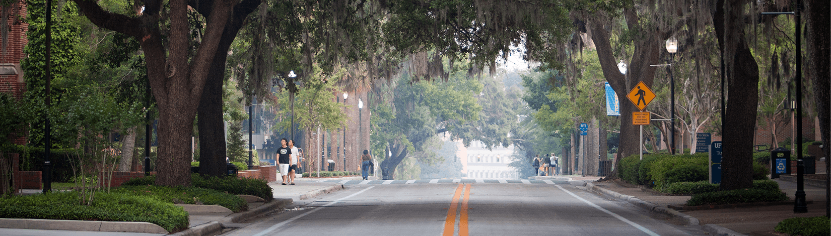 A street view of UF